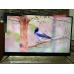 Телевизор BBK 50LEX8161UTS2C 4K Ultra HD на Android, 2 пульта, HDR, премиальная аудио система в Приморском фото 9
