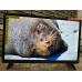 Телевизор BQ 28S01B - заряженный Смарт ТВ с Wi-Fi и Онлайн-телевидением на 500 телеканалов в Приморском фото 7